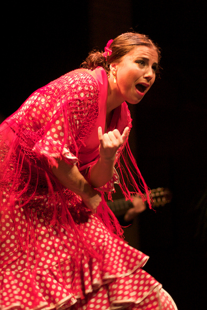 Sheer Passion of Flamenco at El Museo del Baile Flamenco in Seville