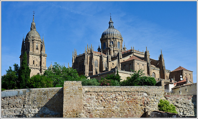 Great View of Salamanca's Cathedrals
